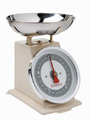 Terraillon Tradition 500